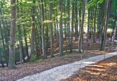 Life Class_Sveti Martin_outdoor_trim track